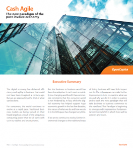 Cash Agile White Paper